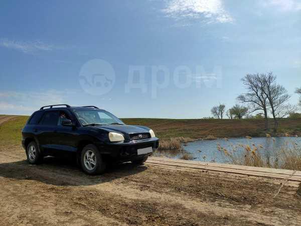 Hyundai Santa Fe, 2004 год, 300 000 руб.