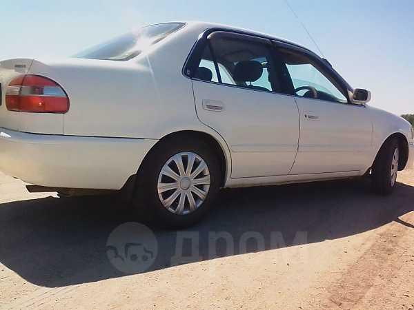 Toyota Corolla, 1998 год, 208 000 руб.