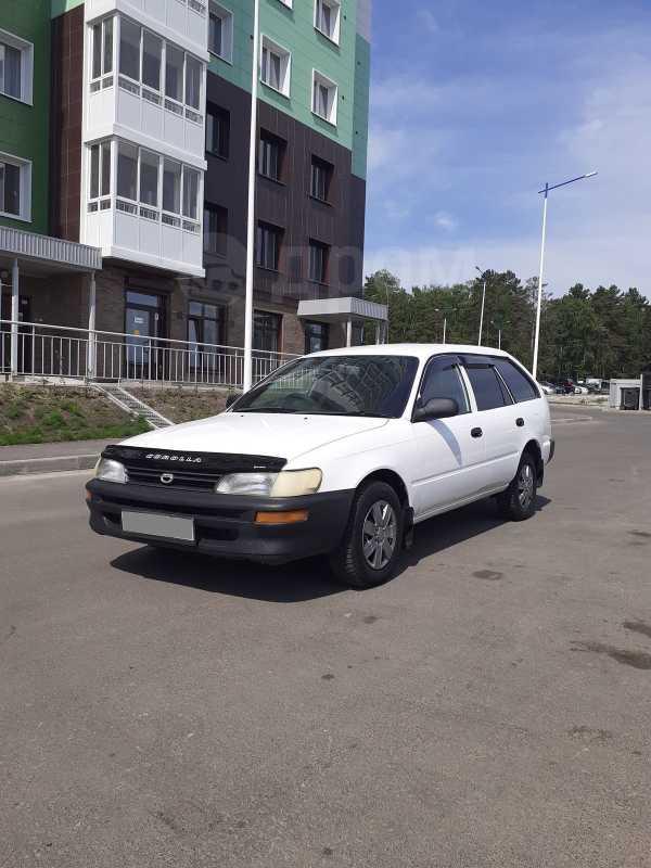 Toyota Corolla, 2001 год, 248 000 руб.
