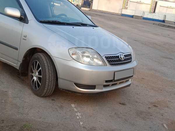 Toyota Corolla, 2003 год, 409 000 руб.