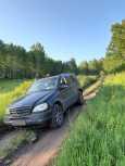 Mercedes-Benz M-Class, 2002 год, 300 000 руб.