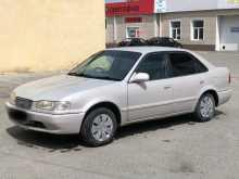 Курган Sprinter 1998