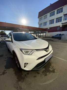 Краснодар Toyota RAV4 2015