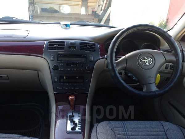 Toyota Windom, 2002 год, 500 000 руб.