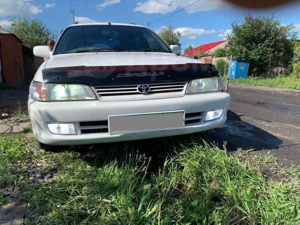 Toyota Corolla, 1998 год, 201 000 руб.