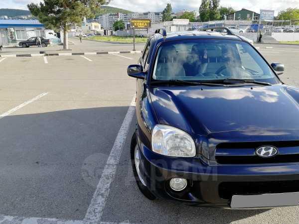 Hyundai Santa Fe Classic, 2008 год, 463 000 руб.