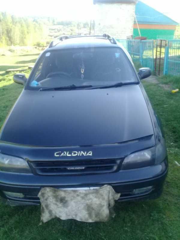 Toyota Caldina, 1995 год, 230 000 руб.