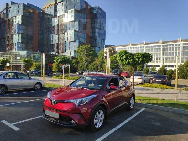 Toyota C-HR, 2019 год, 1 730 000 руб.