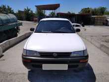 Бахчисарай Corolla 1993