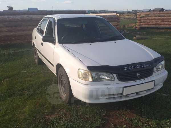 Toyota Corolla, 1999 год, 225 000 руб.
