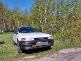 Петропавловск-Камчатский Corolla 2001
