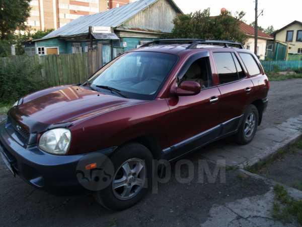 Hyundai Santa Fe Classic, 2002 год, 320 000 руб.