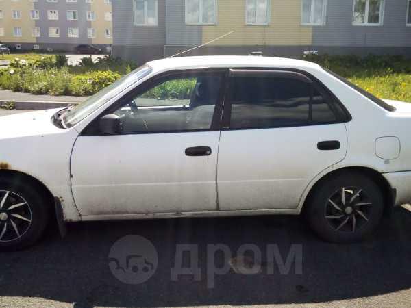 Toyota Corolla, 1999 год, 129 000 руб.