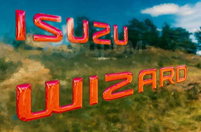 Isuzu Wizard, 2001 год, 650 000 руб.