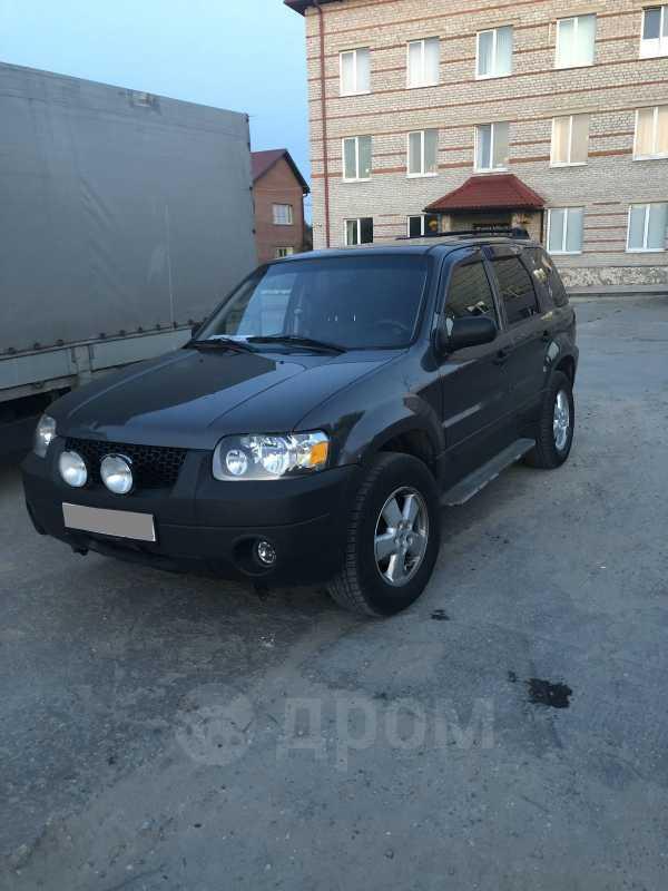 Ford Escape, 2004 год, 360 000 руб.