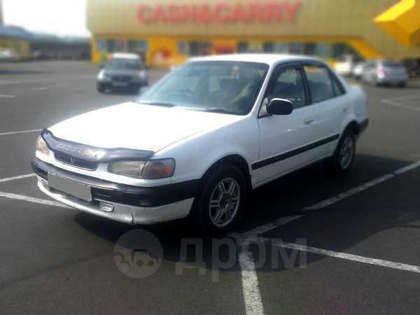 Toyota Corolla, 1995 год, 150 000 руб.