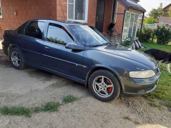 Opel Vectra, 2000 год, 178 000 руб.