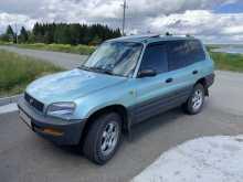 Лесной RAV4 1995