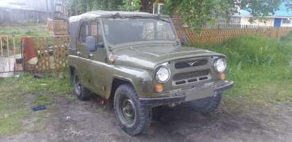Колпашево 3151 1992