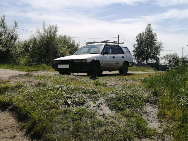 Toyota Sprinter Carib, 1995 год, 65 000 руб.
