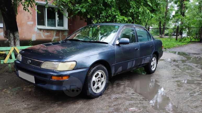 Toyota Corolla, 1988 год, 132 000 руб.