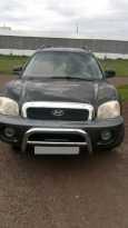 Hyundai Grand Santa Fe, 2000 год, 300 000 руб.