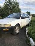 Toyota Corolla, 1999 год, 125 000 руб.
