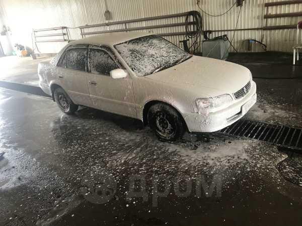 Toyota Corolla, 1999 год, 200 000 руб.