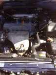 Toyota Caldina, 1999 год, 296 000 руб.