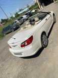 Chrysler Sebring, 2010 год, 699 000 руб.
