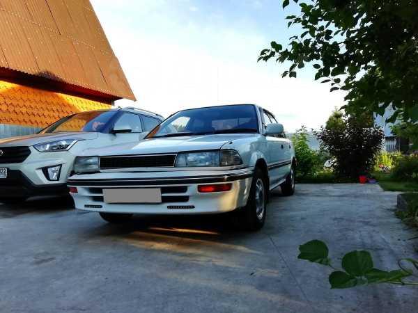 Toyota Corolla, 1991 год, 199 000 руб.