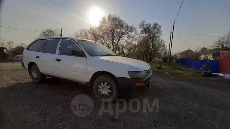 Toyota Corolla, 1998 год, 137 000 руб.