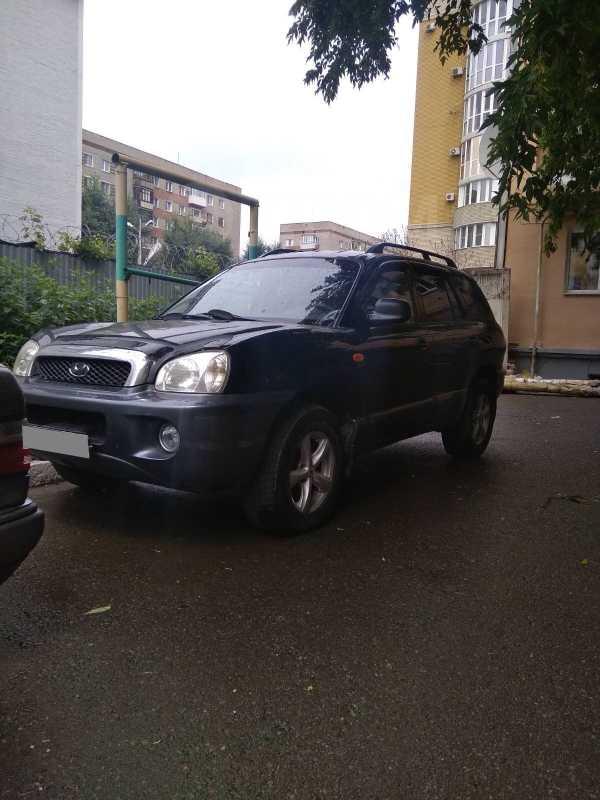 Hyundai Santa Fe, 2002 год, 358 000 руб.