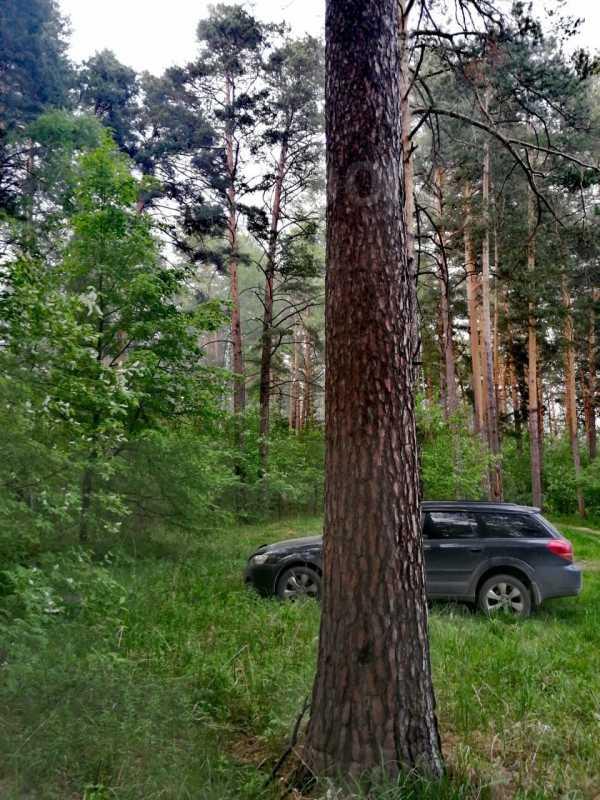 Subaru Outback, 2005 год, 570 000 руб.