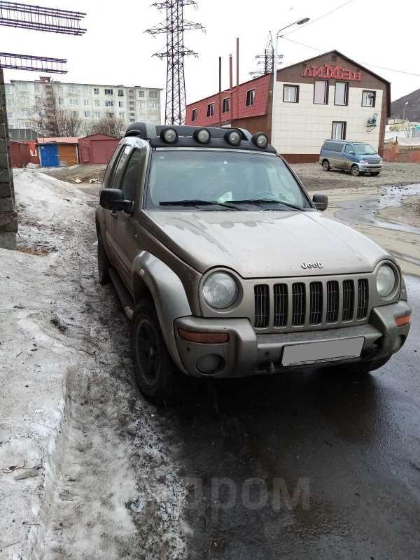 Jeep Liberty, 2003 год, 450 000 руб.