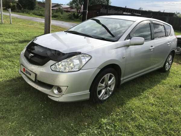 Toyota Caldina, 2002 год, 455 000 руб.