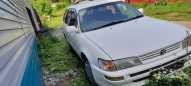 Toyota Corolla, 1999 год, 163 000 руб.