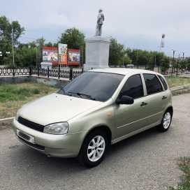 Шадринск Калина 2008
