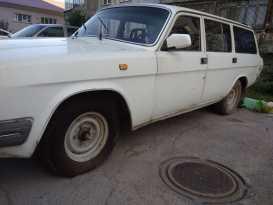 Новосибирск 3102 Волга 1995