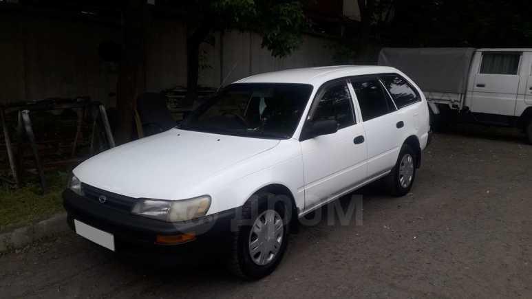 Toyota Corolla, 2001 год, 170 000 руб.