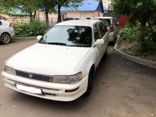 Toyota Corolla, 2001 год, 135 000 руб.