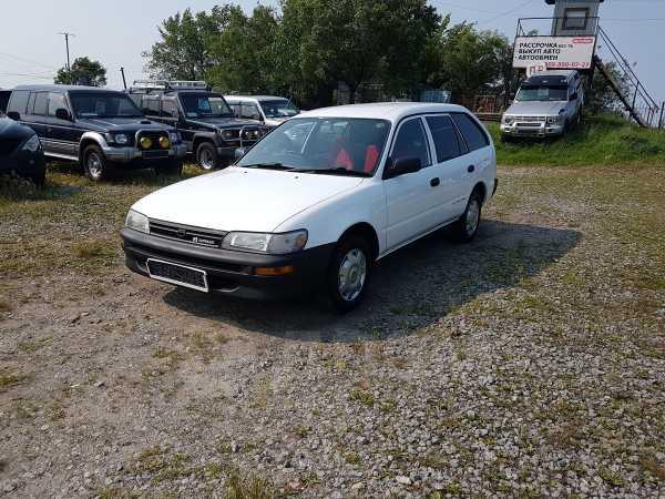 Toyota Corolla, 1998 год, 258 000 руб.