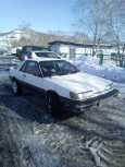 Nissan Sunny RZ-1, 1986 год, 60 000 руб.