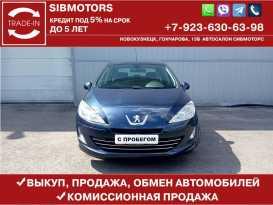 Новокузнецк 408 2013