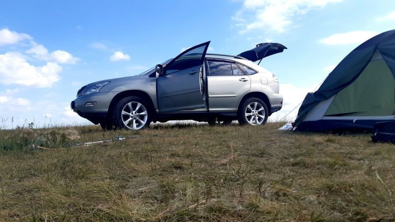 Lexus RX300, 2005 год, 865 000 руб.