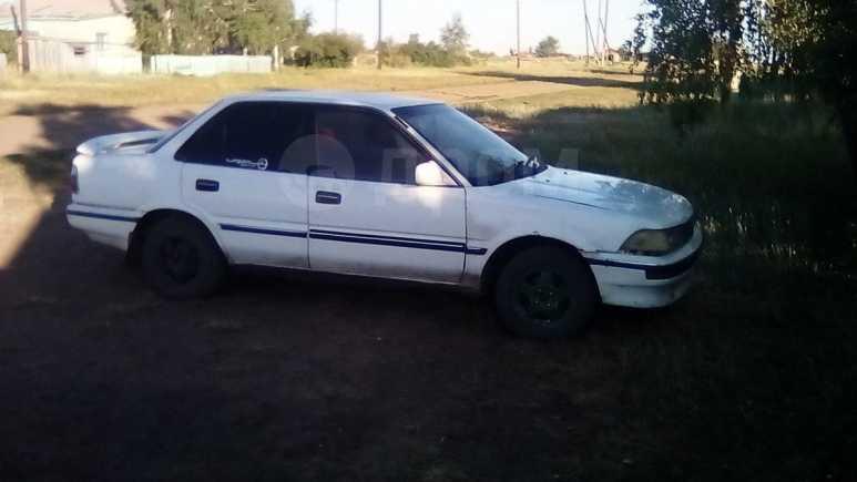 Toyota Corolla, 1988 год, 37 999 руб.