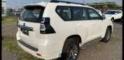 Toyota Land Cruiser Prado, 2020 год, 3 996 000 руб.