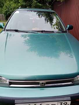 Калининград Honda Accord 1993