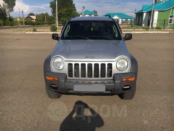 Jeep Liberty, 2003 год, 465 000 руб.