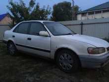 Москаленки Corolla 1995